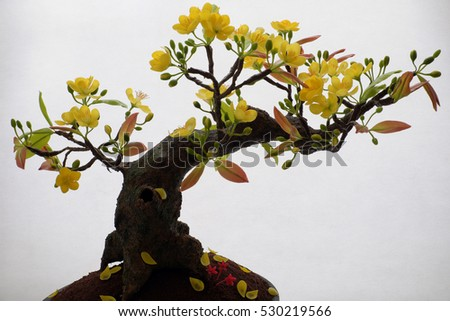 Vietnam spring flower for home decoration in springtime, handmade apricot blossom make from clay, amazing artwork with shade on white background, this kind of bonsai is tradition ornament on tet