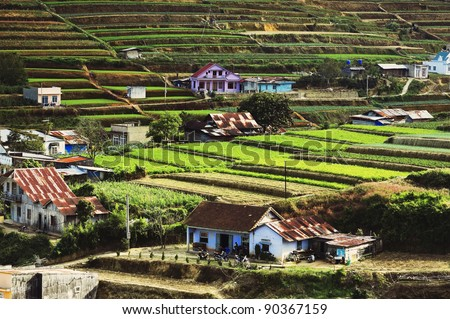 Vietnamese Central Highlands Agriculture (Da Lat, Vietnam) - stock photo