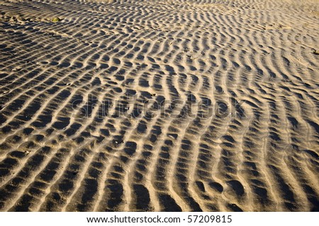 View along sand ripple patterns on beach