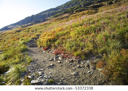 View along the trail to Hidden Lake, Glacier National Park, Montana, United States. - stock photo