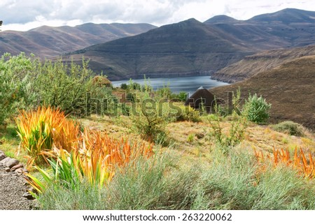 View at lake from the garden. Shot in Botanical Gardens, Katse Dam, Lesotho.