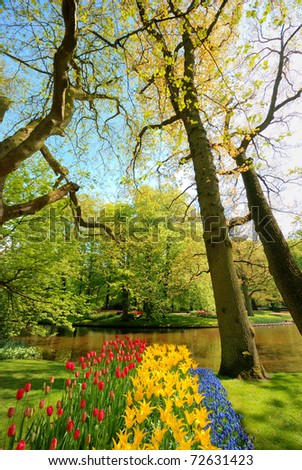 View at the Keukenhof park pond, Netherlands