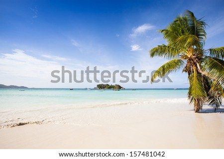 view from a beautiful beach with palms to a tropical island in a turquoise sea, under a blue sky, Seychelles, Praslin