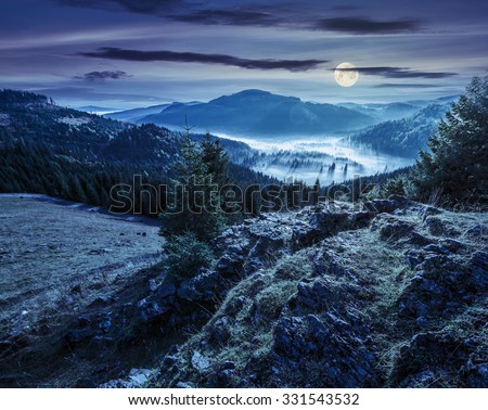 view from a rocky cliff to full of fog valley with conifer forest in high mountains of Apuseni Natural Park in Romania at night in full moon light - stock photo