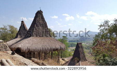 view from a traditional village in wanokaka province - sumba indonesia