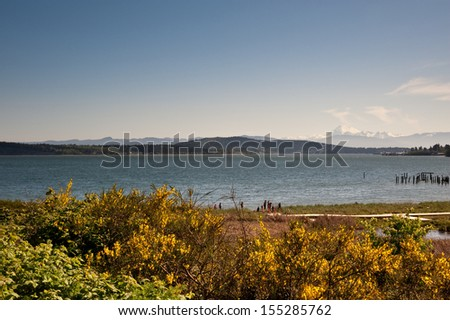 View from Anacortes ferry terminal - stock photo