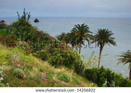 View from cliff top on the island of Madeira