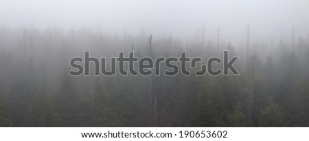 View from Clingman's Dome in Great Smoky Mountains National Park - stock photo