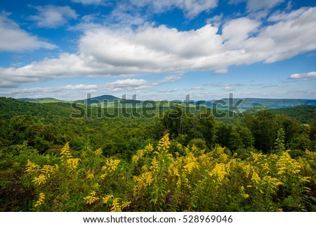 View from Highway 181, in Pisgah National Forest, North Carolina.