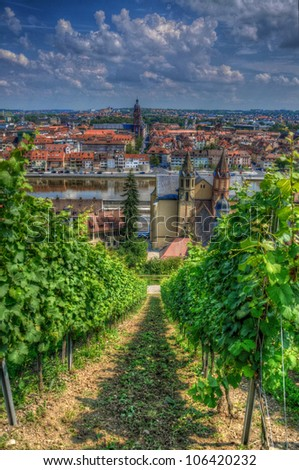 View from Marienberg Fortress (Castle) through grapes to Wurzburg, Wurzburg, Bayern, Germany