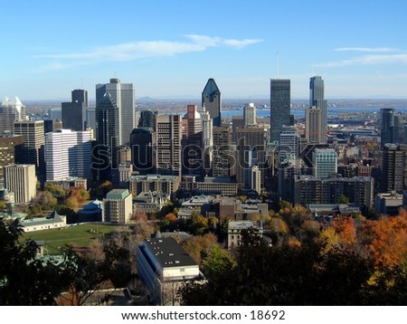 view from montreal's skyline from mont-royal in autumn