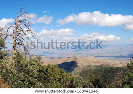 View from Mt Lemon near Tucson, Arizona / Dead on Top - stock photo
