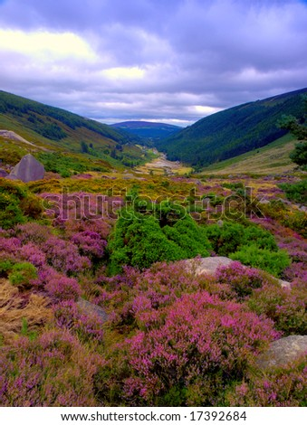 view from Sally Gap,Co.Wicklow, Ireland - stock photo