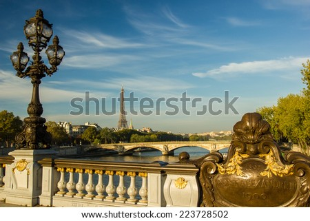 View from the bridge of Alexandr III in Paris, France, Eiffel tower in the background - stock photo