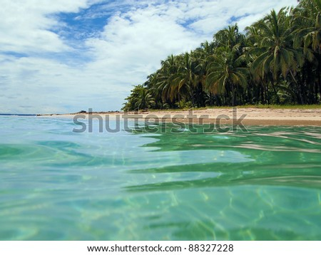 View from the water surface of a sandy beach with tropical vegetation, Caribbean sea, Panama - stock photo
