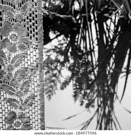 View from the window with lace curtain on the Japanese style pond. Black and white. Focus on curtain.