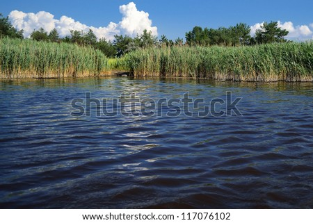 view from water to land on a salt lake in steppe part of Kherson region in Southern Ukraine - stock photo