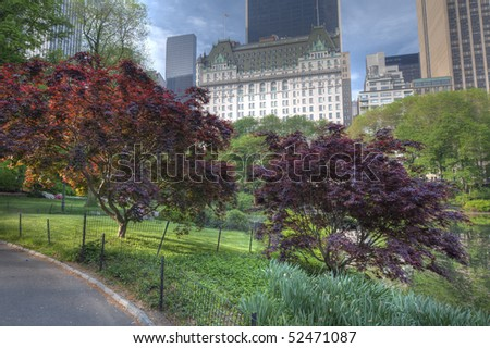 View in Central Park of 59th street and the Plaza hotel with Japanese maple trees in the foreground - stock photo
