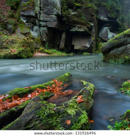 View of a beautiful autumn creek in Czech-Saxony Switzerland, panoramic picture.