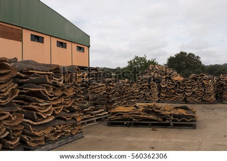 View of a bunch of raw cork planks stacked on a cork factory.