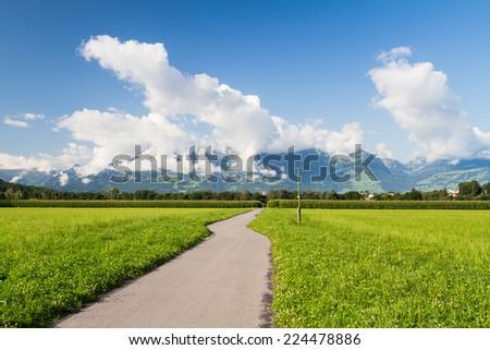 View of a fields in Liechtenstein - stock photo