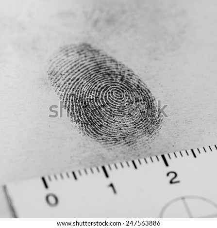 View of a fingerprint revealed by printing. - stock photo