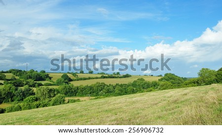 View of a Green Farmland Field and a Cloudy Blue Sky Above - stock photo