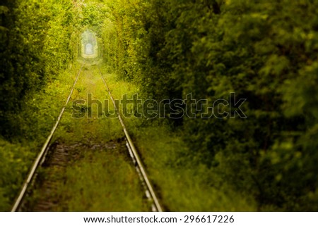 "View of a railroad track in the woods that form a tunnel around it, tourist attraction near Caransebes, Romania, also known as the ""love tunnel"". - stock photo"