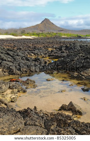 View of a rocky coast, red crabs, and Dragon Hill in the background of Santa Cruz Island, Galapagos National Park, Ecuador, vertical - stock photo