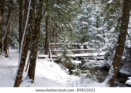 View of a snow-covered bridge on a mountain path in winter in horizontal