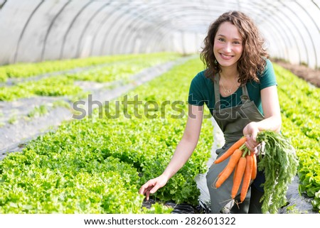 View of a Young attractive farmer harvesting carrots - stock photo