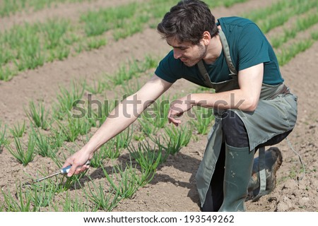 View of a Young attractive farmer verify progress of culture