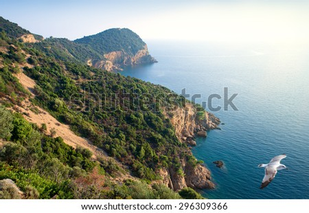 View of Aegean Sea and coastline of Thassos Island,Northern Greece at sunset - stock photo