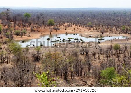 view of african landscape with waterhole, near victoria falls, Zimbabwe - stock photo