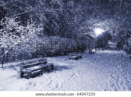 View of alley and benches through snowing. Blue tone. Night shot. - stock photo