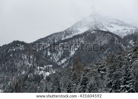 View of Alps mountain peaks covered by clouds and snow under overcast sky with conifer trees in the foreground - stock photo