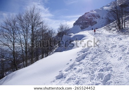 View of an alpine winter landscape with tracks in the snow. - stock photo