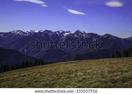 View of Baileys Ridge in the Olympic Mountains under blue skies from the Hurricane Ridge visitor�s center. - stock photo
