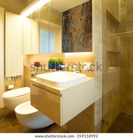 View of bathroom with toilet and bidet