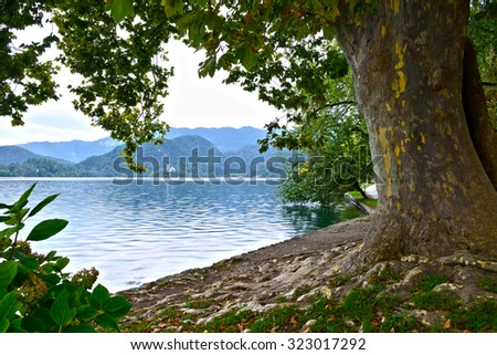 view of Bled Lake on a morning, Slovenia, Europe - stock photo