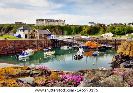 View of boats and a lifeboat in Portpatrick harbour in southwest Scotland,with a foreground of thrift and lichen covered rocks - stock photo