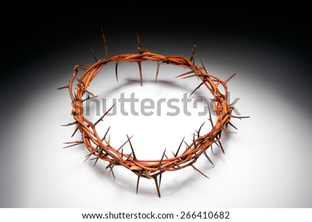 view of branches of thorns woven into a crown depicting the crucifixion on isolated background - stock photo