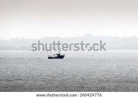 View of fishing boat returning with lots of seagulls feeding at the rear of the boat.  - stock photo