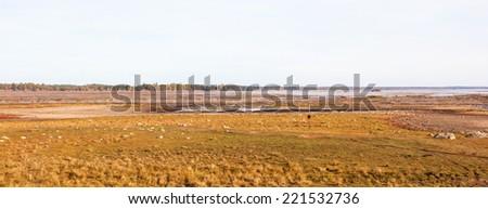 View of Hornborgasjon a wetland in Sweden - stock photo