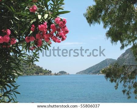 view of island in aegean sea in oleander frame - stock photo