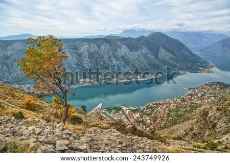 view of Kotor bay and town in autumn, Montenegro