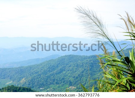 View of mountain in northern thailand - stock photo
