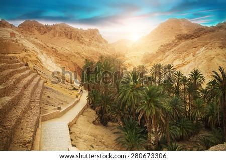 View of mountain oasis Chebika, Sahara desert, Tunisia, Africa - stock photo