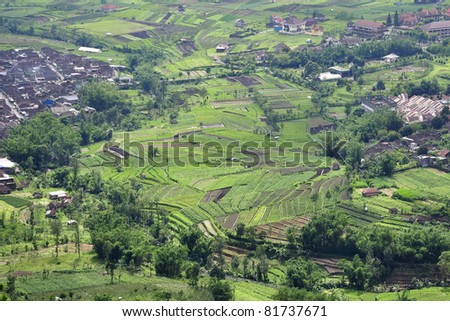 View of natural green field - stock photo