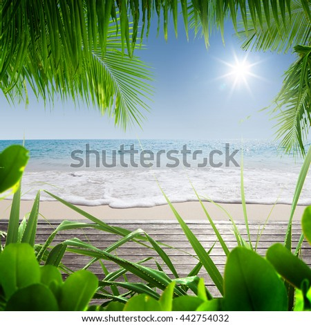 View of nice tropical beach with some palms - stock photo